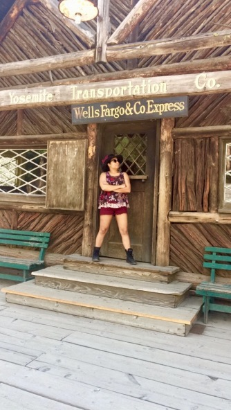 Pioneer Village_wells fargo