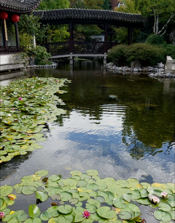 chinese-gardens-5.png